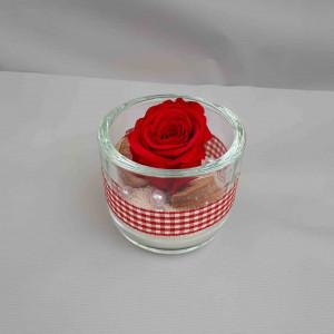 Rose éternelle unique
